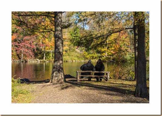 north woods 11_04_12 (15)_blog_three