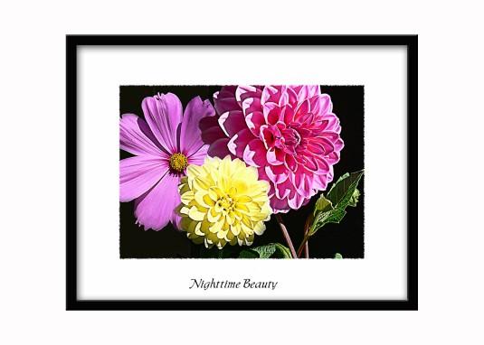 sample flower 6compositeflowers framed