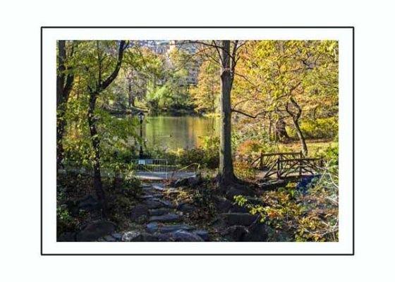 north woods 11_04_12 (31)_blog