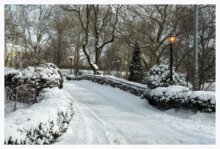1_03_2013_winter_snow_shurz (44)
