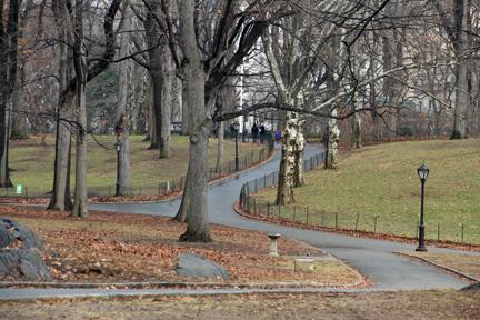 central park_dog statute area_jan14_ 2014 (1)