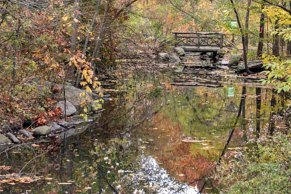 North Woods_Ravine-21