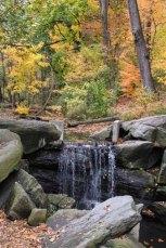 North Woods_Ravine-33