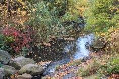 North Woods_Ravine-61