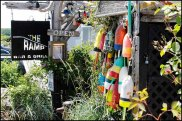 cape porpoise blog (19)